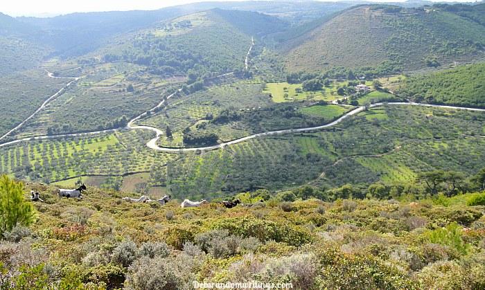 hills of Kilimenos