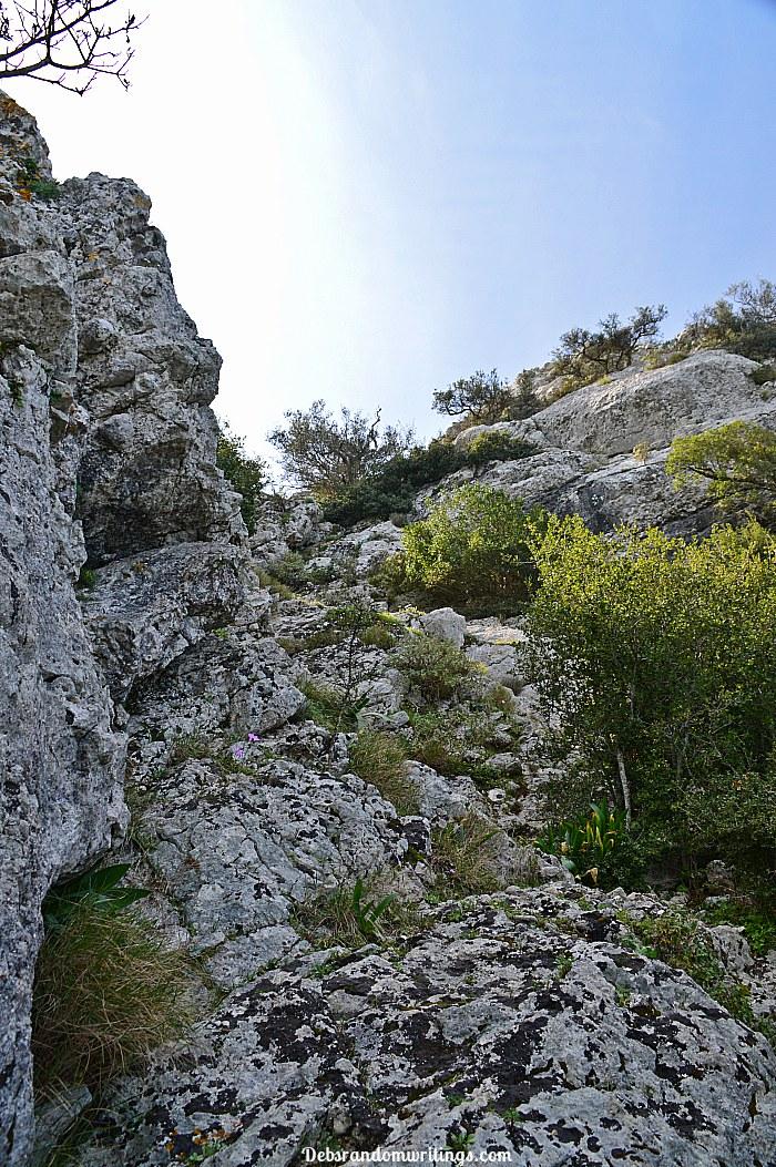 Skopos