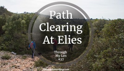 Path Clearing mission at Elies