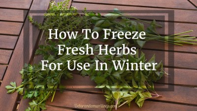 Keep your herb supply plentiful by freezing fresh herbs in summer