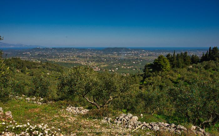 Looking across Zakynthos.