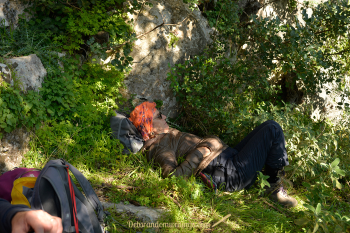 A lazy snoozes in the grass before out hike back to Volimes.
