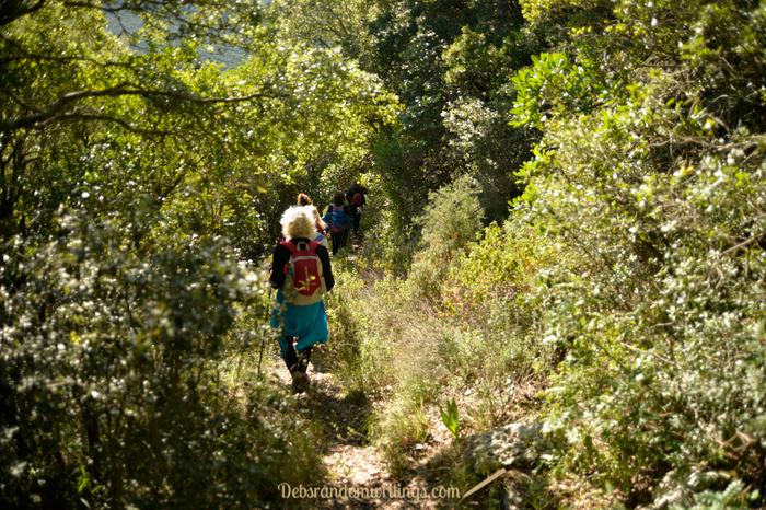 Hiking through undergrowth.