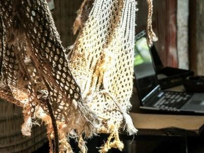 Wat kost bellen en internet in de tropen?