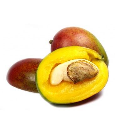 アフリカンマンゴーだけでは痩せないのは本当か?