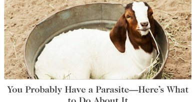You Probably Don't Have a Parasite Despite Goop Misinformation