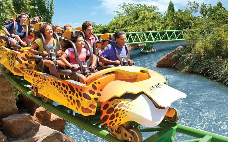 Busch Gardens - Festa de 15 anos na Disney
