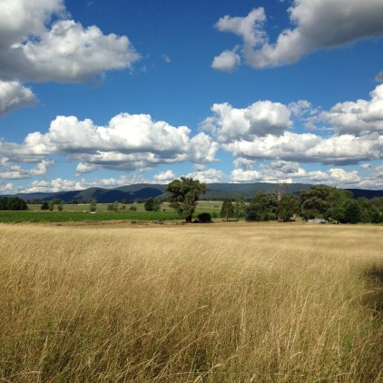 The view from the back paddock