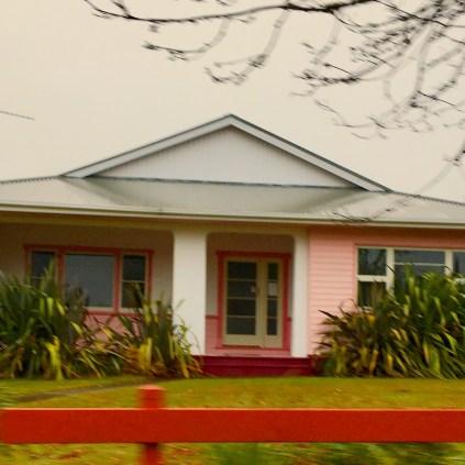 Dusky pink House