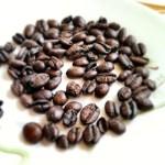 Imagem de vários grãos de café torrados, sobre um fundo branco.
