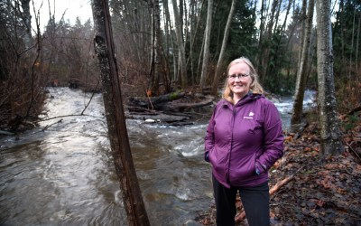 Morrison Creek: a spring-fed stream without stormwater outlets sustains aquatic life
