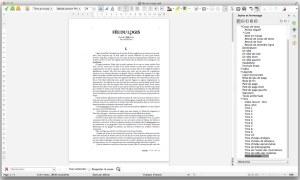 """Mon projet """"Fée du Logis"""" en cours d'écriture dans un traitement de texte, en l'occurrence LibreOffice."""