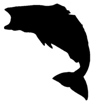 big bass iron-on decal