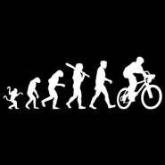 Bike Evolution Decal