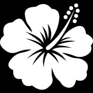 Hawaii island flower decal