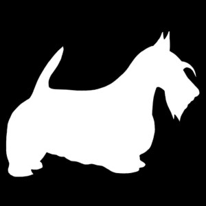 scottie decal