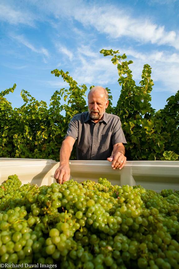 Kent Waliser, Director of Vineyard Operations at Sagemoor