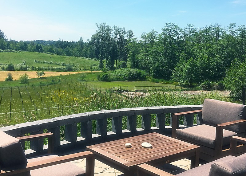 Blackwood Lane Winery, Langley B.C.