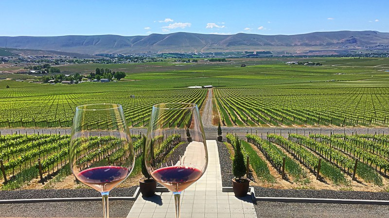 Red Mountain AVA at Col Solare Winery