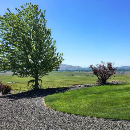 Col Solare Winery Vineyard, Red Mountain AVA Washington