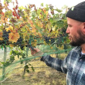 Seth Kitzke, Upsidedown Wine