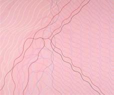 Audra Skuodas, Vibrational Vulnerability Series (2008)