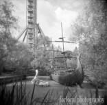 Camera: Holga 120N Film: Kodak Tri-X