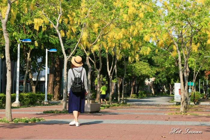 【台南景點】夏日的一抹美好,為藍天劃上最美的印記:阿勃勒花季