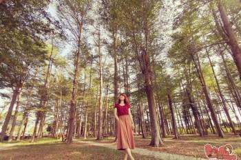 【台南景點】台南版臥虎藏龍電影場景,免到深山也可享受森林浴的滋養~