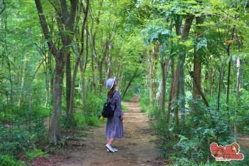 【台南綠色隧道】台南綠色隧道、台南版龍貓森林全紀錄!遠離人潮放風就來這吧~