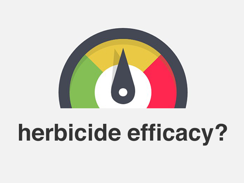Herbicide Efficacy and Record Keeping