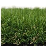 Bermuda Grass II