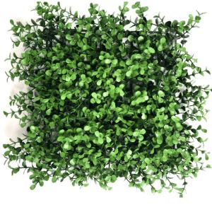 Green Lavender decking