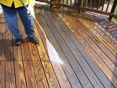 Deck & Fence Cleaning Service