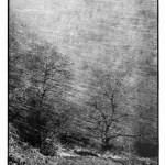 Tempête de neige, clichés noir et blanc argentique, Jean-Pierre Devals