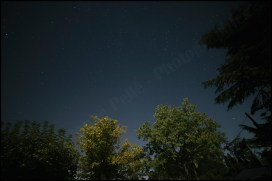 astro (2)