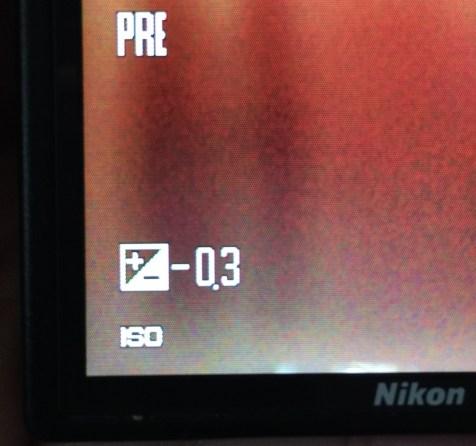 The Exposure Icon