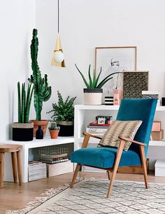 decoration_tendance_cactus_pot_decocot
