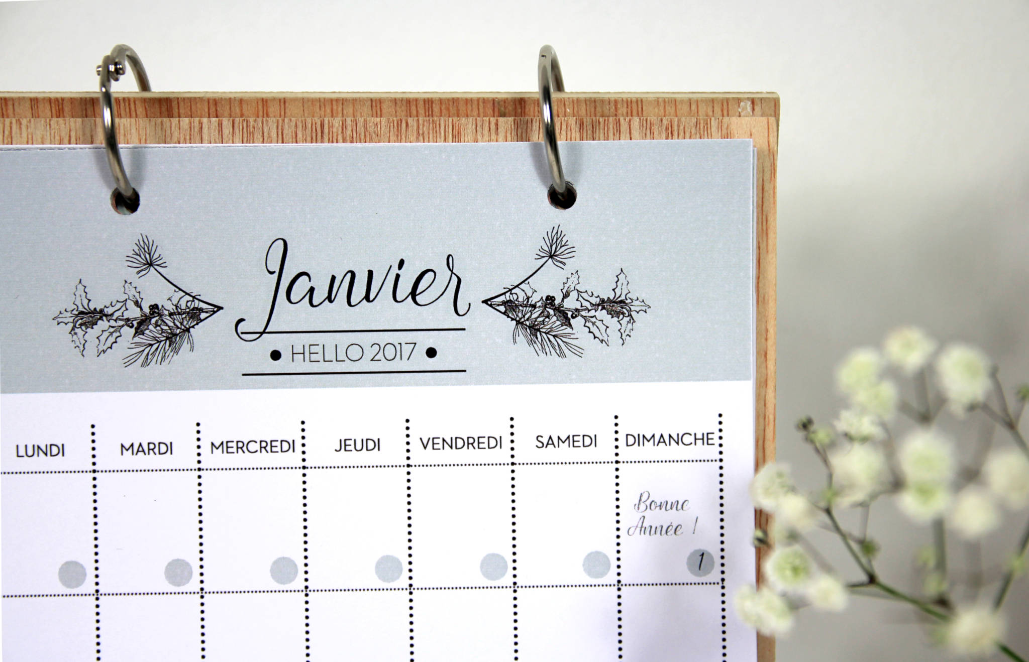 blog-deco-decocot-carnet-free-printable-detail-couverture-calendrier-2017-5