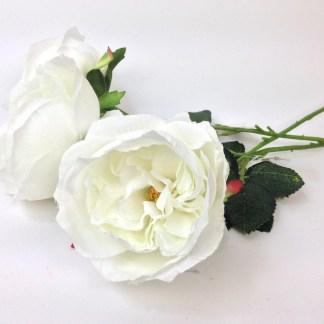 trandafir matase