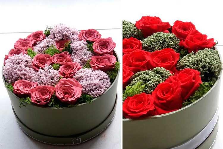 Kurutulmuş Çiçekleri Dondur