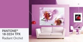 Orquídea radiante, el color de moda para el 2014
