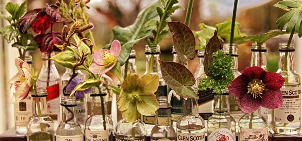 Fleurs dans bouteille de whisky