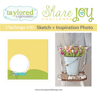 Share Joy Challenge 30 by Taylored Expressions