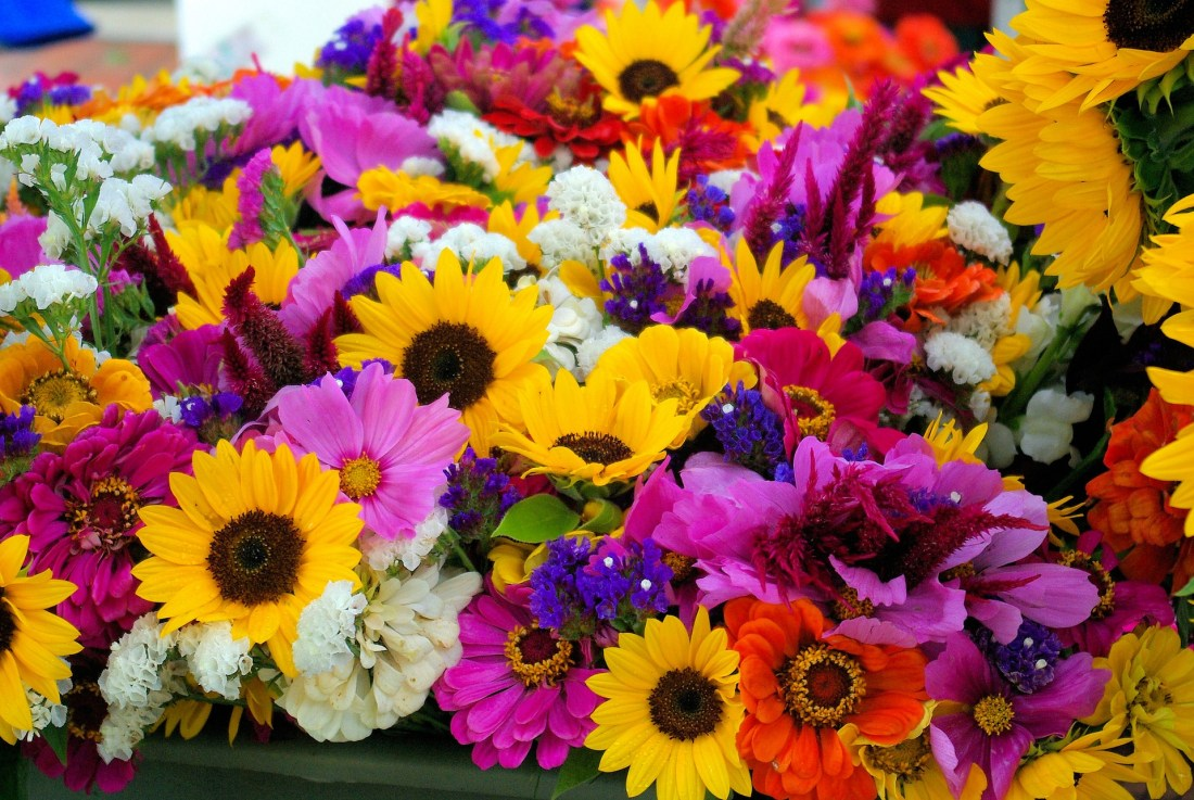 farmers-market-mixed-flowers-3777733_1920