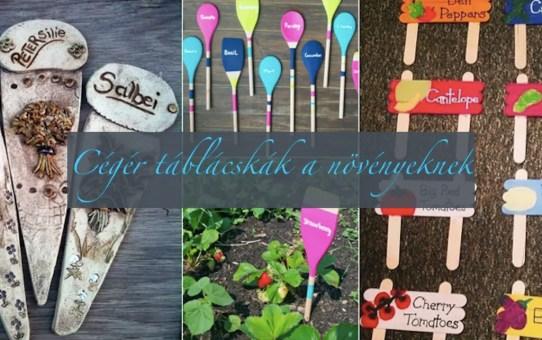 Tavaszi kert - cégér táblácskák a növényeknek