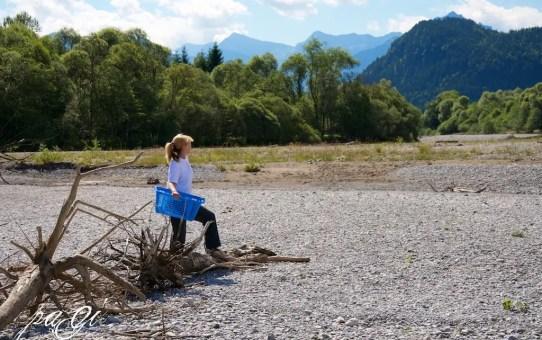 Uszadékfa gyűjtése a Lechnél