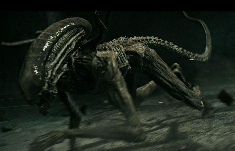 alien course