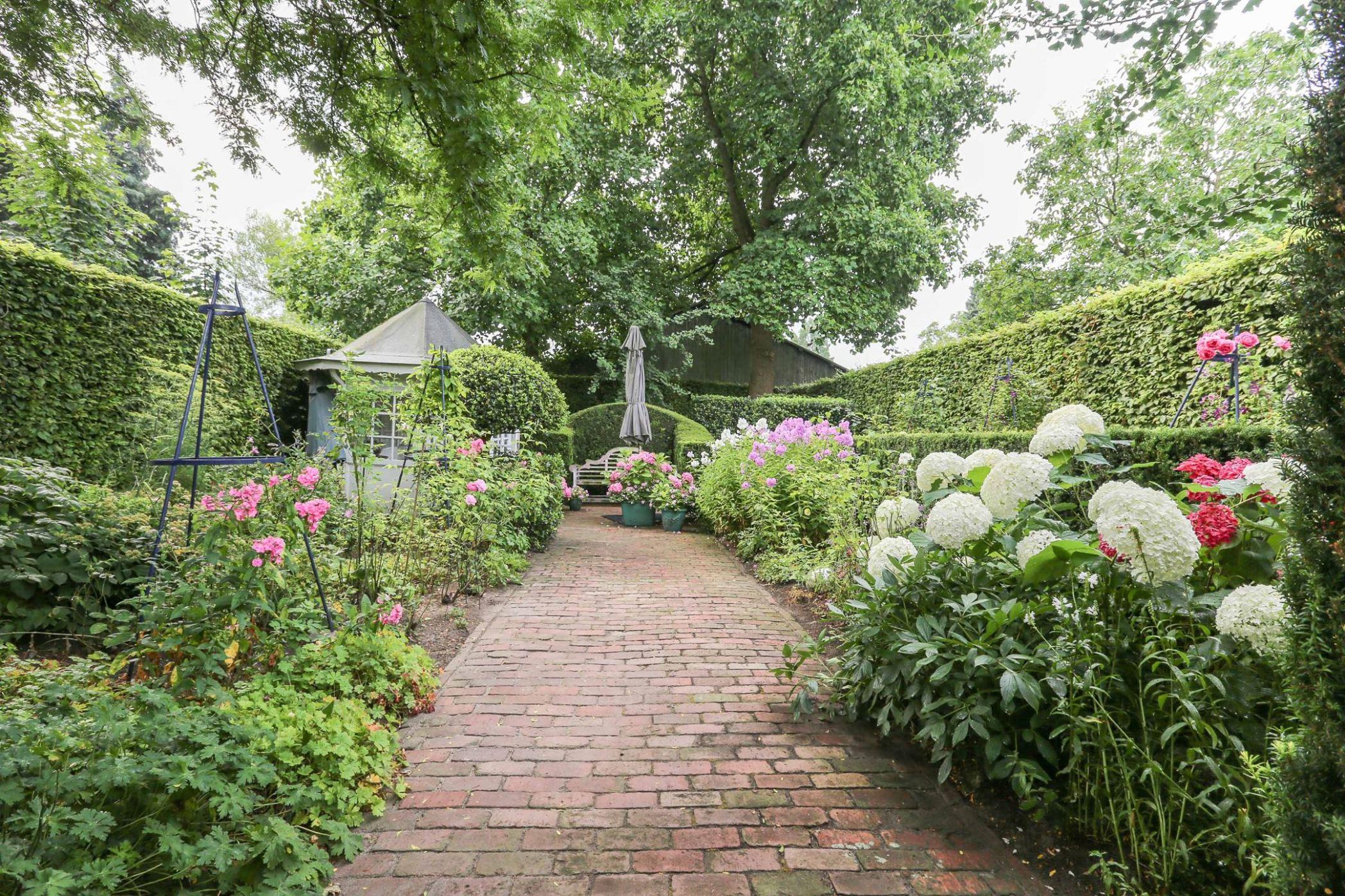 сад дорожка цветы кустарники