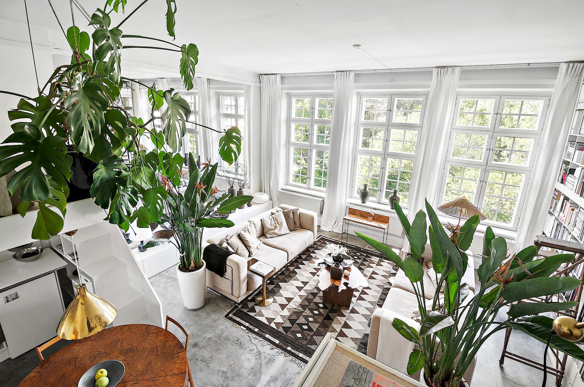 гостиная окна цветы мебель